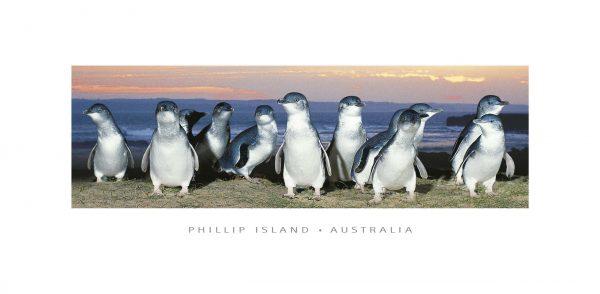 panoramic postcard