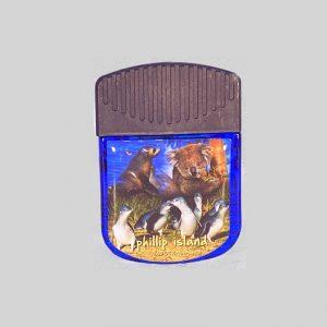 souvenir magnet